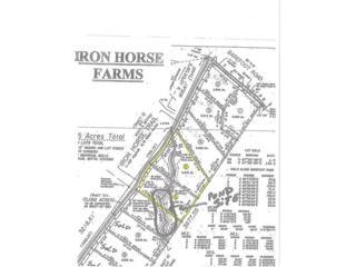 5 Iron Horse Trail, Lula, GA 30554 (MLS #5813829) :: North Atlanta Home Team