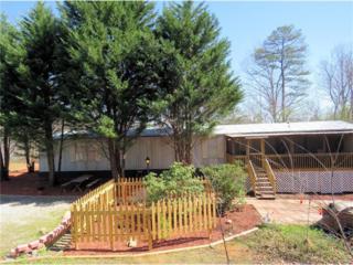 60 Essex Drive, Dahlonega, GA 30533 (MLS #5816609) :: North Atlanta Home Team