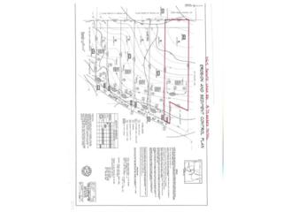 1165 Shope Lake Road, Calhoun, GA 30701 (MLS #5816800) :: North Atlanta Home Team