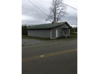 156 Stancil Road, Canton, GA 30114 (MLS #5818123) :: North Atlanta Home Team