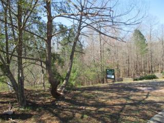 41 Arbor Hills Way, Talking Rock, GA 30175 (MLS #5818202) :: North Atlanta Home Team
