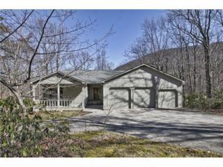 46 Mulligan Way, Jasper, GA 30143 (MLS #5818273) :: North Atlanta Home Team