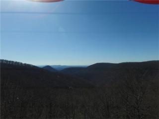 0 Sundset Ridge, Jasper, GA 30143 (MLS #5818535) :: North Atlanta Home Team
