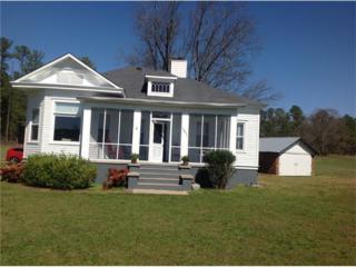 161 Cline Smith Road NE, Cartersville, GA 30121 (MLS #5818726) :: North Atlanta Home Team