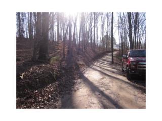 0 Nichols Trail, Talking Rock, GA 30175 (MLS #5818998) :: North Atlanta Home Team