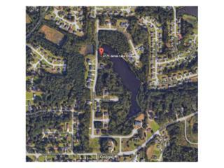4175 James Lake Drive, Conley, GA 30288 (MLS #5819016) :: North Atlanta Home Team