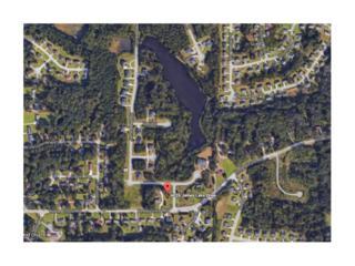 4026 James Lake Drive, Conley, GA 30288 (MLS #5819055) :: North Atlanta Home Team