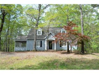 134 White Antelope Street, Waleska, GA 30183 (MLS #5819243) :: North Atlanta Home Team