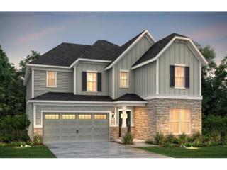1075 Blue Indigo Drive, Roswell, GA 30076 (MLS #5819426) :: North Atlanta Home Team