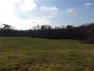 4401 Mountain View Road, Oakwood, GA 30566 (MLS #5820380) :: North Atlanta Home Team