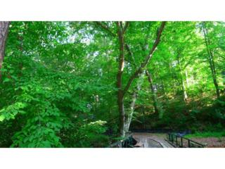 585 Mountain Way NE, Atlanta, GA 30342 (MLS #5820589) :: North Atlanta Home Team