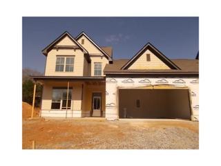 65 Bear Claw Terrace Terrace, Dahlonega, GA 30533 (MLS #5820953) :: North Atlanta Home Team