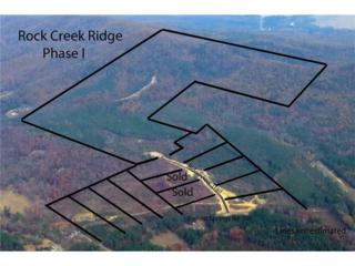 170 Ridgeview Trail SW, Calhoun, GA 30701 (MLS #5821968) :: North Atlanta Home Team
