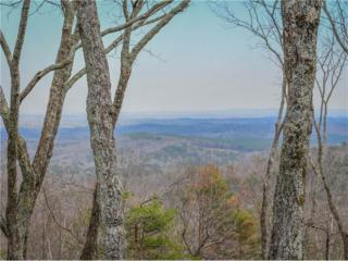 1010 Cherokee Trail, Big Canoe, GA 30143 (MLS #5822005) :: North Atlanta Home Team