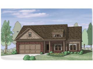 585 Amaranth Trail, Hoschton, GA 30548 (MLS #5822677) :: North Atlanta Home Team