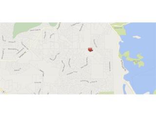 5097 New Chapel Hill Way, Cumming, GA 30041 (MLS #5822791) :: Path & Post Real Estate