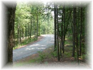 17 Pickett Mill Lane, Ellijay, GA 30540 (MLS #5822825) :: North Atlanta Home Team