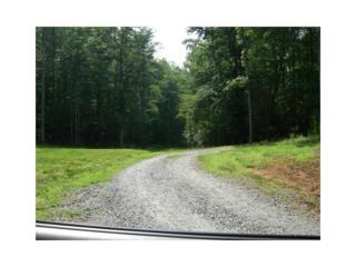 18 Pickett Mill Lane, Ellijay, GA 30540 (MLS #5823081) :: North Atlanta Home Team