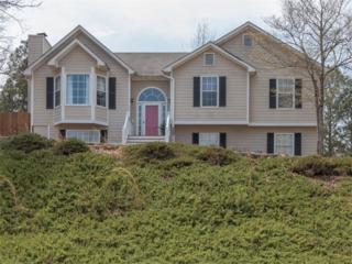 50 Fair Havens Drive, Hiram, GA 30141 (MLS #5823436) :: North Atlanta Home Team