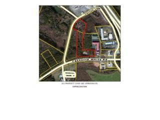 0 Cassville White Road, Other North, GA 30121 (MLS #5823850) :: North Atlanta Home Team