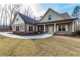 8039 Ansbury Park Way, Douglasville, GA 30135 (MLS #5824860) :: North Atlanta Home Team