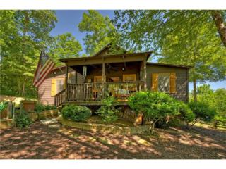 191 Twin Springs Road, Mineral Bluff, GA 30559 (MLS #5825217) :: North Atlanta Home Team