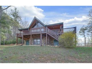 115 Wildcat Run, Suches, GA 30572 (MLS #5830300) :: North Atlanta Home Team