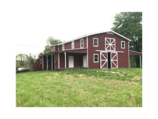 861 Stancil Road, Ball Ground, GA 30107 (MLS #5836329) :: Path & Post Real Estate