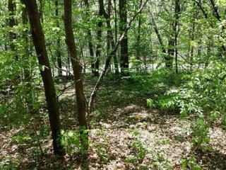 6935 Crystal Cove Trail, Gainesville, GA 30506 (MLS #5282999) :: North Atlanta Home Team