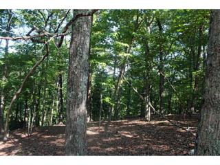 Lot 8 Oak Ridge Road, Ellijay, GA 30536 (MLS #5336985) :: North Atlanta Home Team