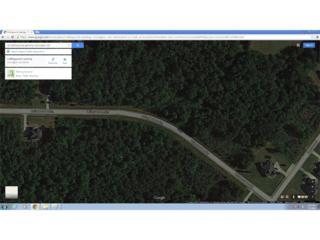 55 Collingwood Landing, Covington, GA 30016 (MLS #5563634) :: North Atlanta Home Team