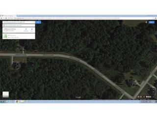 95 Collingwood Landing, Covington, GA 30016 (MLS #5564558) :: North Atlanta Home Team