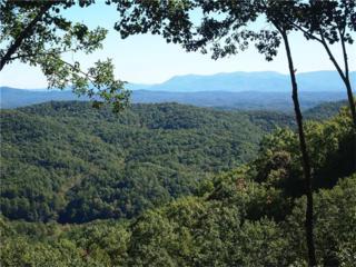 LOT 79 Utana Bluffs Trail, Ellijay, GA 30540 (MLS #5611656) :: North Atlanta Home Team