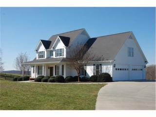 615 Annandale Drive, Clarkesville, GA 30523 (MLS #5652614) :: North Atlanta Home Team