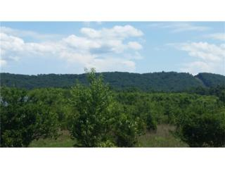 0 Fire Tower Road, Rome, GA 30161 (MLS #5722202) :: North Atlanta Home Team