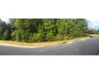 379 Evecliff Drive, Dallas, GA 30132 (MLS #5728158) :: North Atlanta Home Team