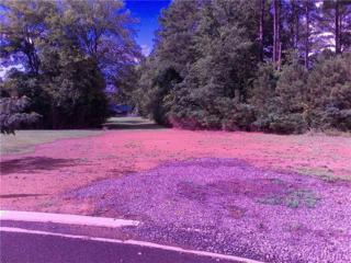 133 Buckeye Lane, Chatsworth, GA 30705 (MLS #5729447) :: North Atlanta Home Team