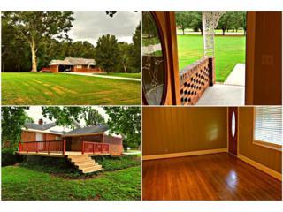 5200 Hiram Lithia Springs Road, Powder Springs, GA 30127 (MLS #5751158) :: North Atlanta Home Team