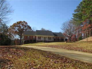 4617 Hammock Lake Drive, Douglasville, GA 30135 (MLS #5768828) :: North Atlanta Home Team