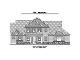 165 Discovery Lake Drive, Fayetteville, GA 30215 (MLS #5775886) :: North Atlanta Home Team