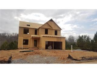 97 Valley Brook Drive, Dallas, GA 30132 (MLS #5796014) :: North Atlanta Home Team