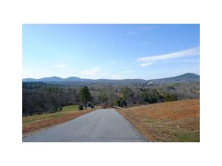 0 Riverside On Lake Nottely, Blairsville, GA 30512 (MLS #5801835) :: North Atlanta Home Team