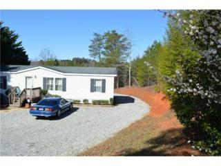 370 Stegall Place, Dawsonville, GA 30534 (MLS #5807619) :: North Atlanta Home Team