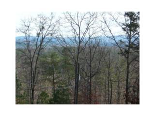 1033 Wildcat Creek Road, Ellijay, GA 30540 (MLS #5807954) :: North Atlanta Home Team