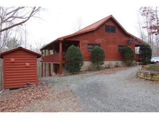 192 Emerald Springs Lane, Chatsworth, GA 30705 (MLS #5810594) :: North Atlanta Home Team