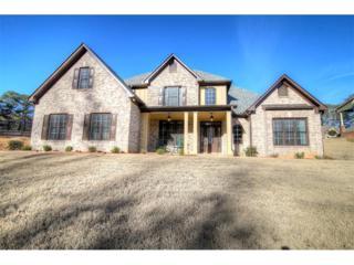 4742 W Lakeshore Drive, Acworth, GA 30101 (MLS #5811148) :: North Atlanta Home Team