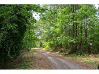 4580 Payne Drive, Woodstock, GA 30188 (MLS #5839547) :: Path & Post Real Estate