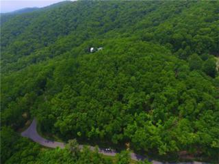 Lot 41 Utana Bluffs Trail, Ellijay, GA 30540 (MLS #5239152) :: North Atlanta Home Team
