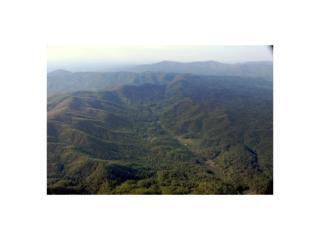 Lot 24 Utana Bluffs Trail, Ellijay, GA 30540 (MLS #5586597) :: North Atlanta Home Team