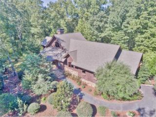 2000 Iron Mountain Road, Canton, GA 30115 (MLS #5748055) :: North Atlanta Home Team